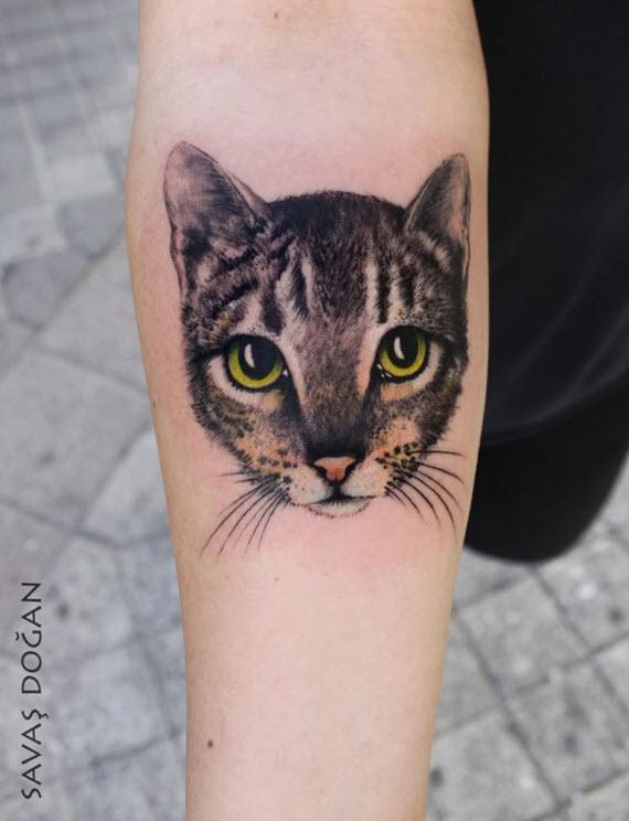 tatouage tête de chat réaliste